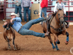 Get ready for the 90th annual North Texas State Fair and Rodeo.