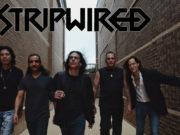 Texas band-Stripwired